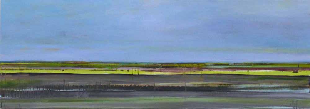 Schilderij Helmuth van Galen Buitenruimte ∙60 x 170 cm ∙ 2013 ∙ acryl/linnen ∙ Particulier bezit